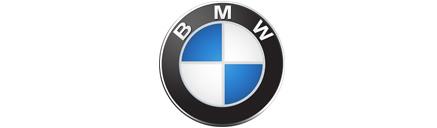 bmw_logo_89.jpg