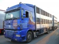 Photo camion remorque